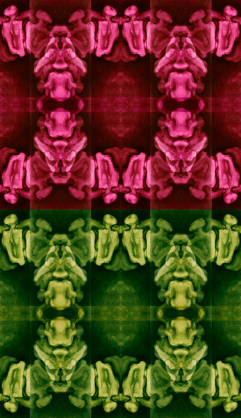 Vertebrae in Rose and Green
